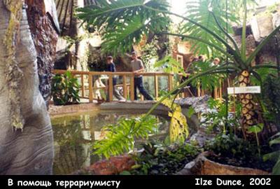Посетители в Тропическом Доме